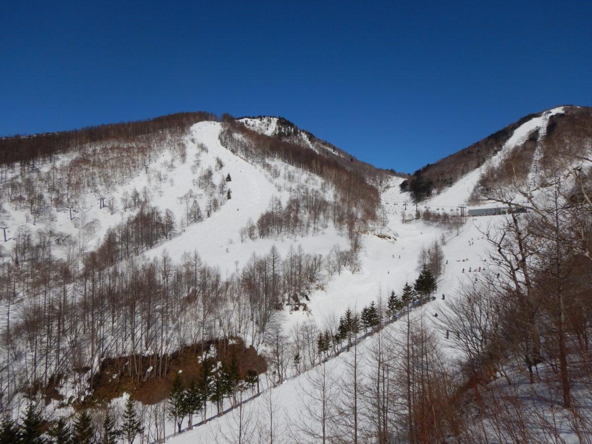 川場スキー場の混雑状況、積雪量、パークアイテムは?2月下旬の口コミ(レビュー)!
